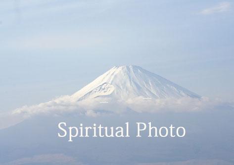 咲くや富士見本_MG_6273.jpg