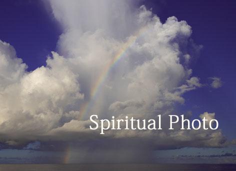 見本 昇虹(しょうげい)WA4F9636のコピー.jpg
